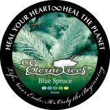 Blue Spruce EterniTrees Urn