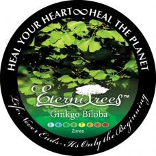 Ginkgo Biloba EterniTrees Urn for Pets