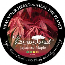 Japanese Maple EterniTrees Urn