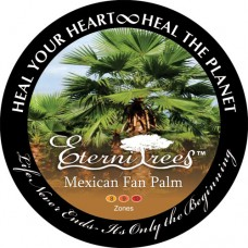 Mexican Fan Palm EterniTrees Urn