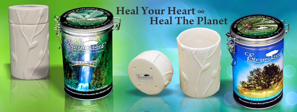 Biodegradable Urns How It Works