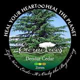 Deodar Cedar EterniTrees Urn